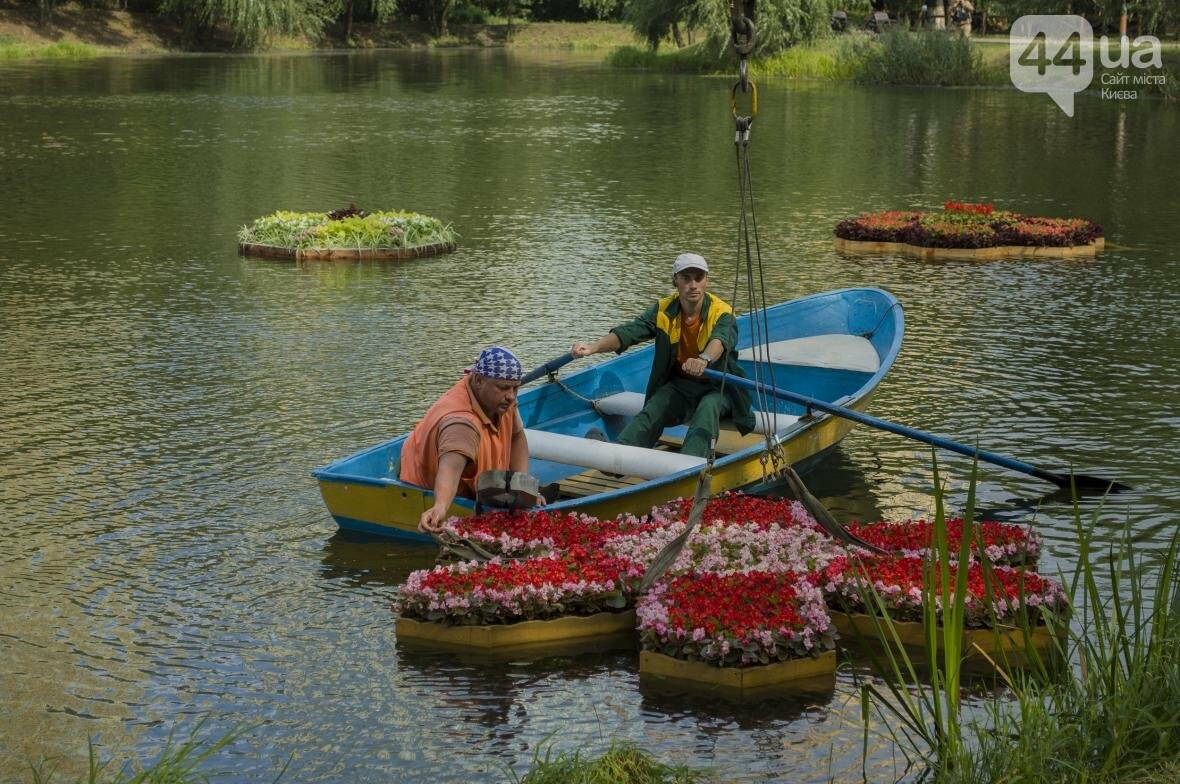 Необычный цветник: в киевском парке появились плавающие клумбы (ФОТОРЕПОРТАЖ), фото-2