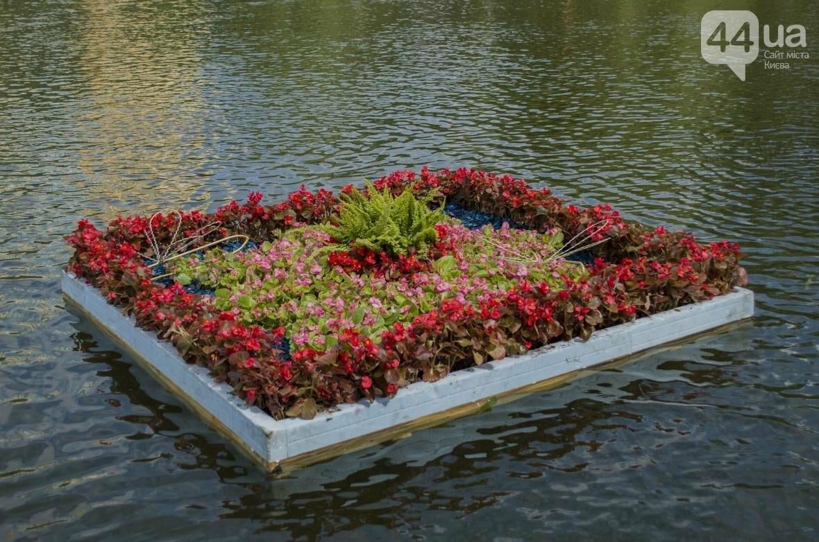 Необычный цветник: в киевском парке появились плавающие клумбы (ФОТОРЕПОРТАЖ), фото-11