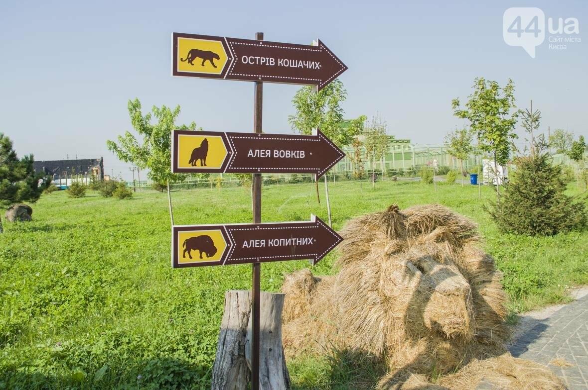 """Вояж по зоопарку """"12 месяцев"""": экзотические животные, большой бассейн и сказочный дворец, фото-1"""