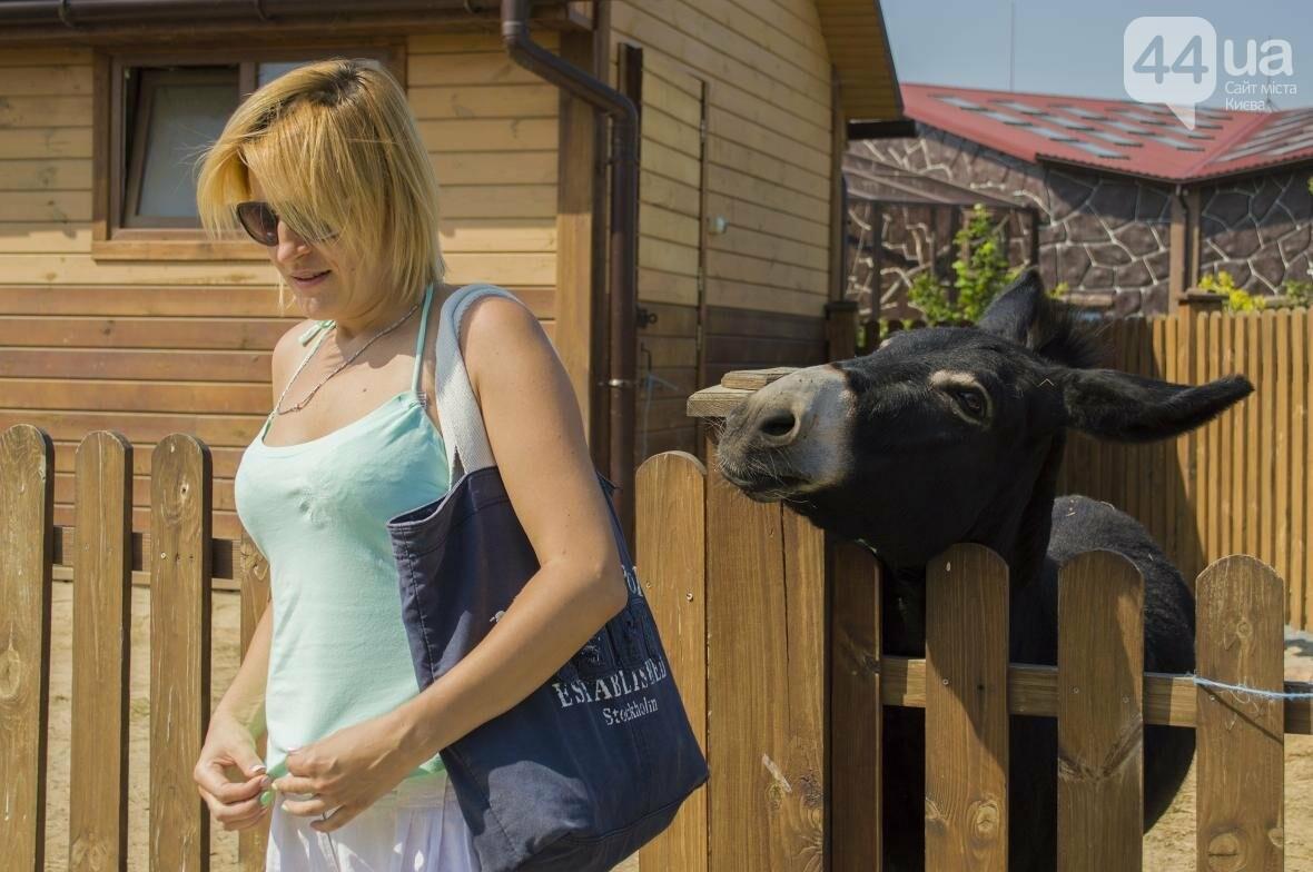 """Вояж по зоопарку """"12 месяцев"""": экзотические животные, большой бассейн и сказочный дворец, фото-19"""