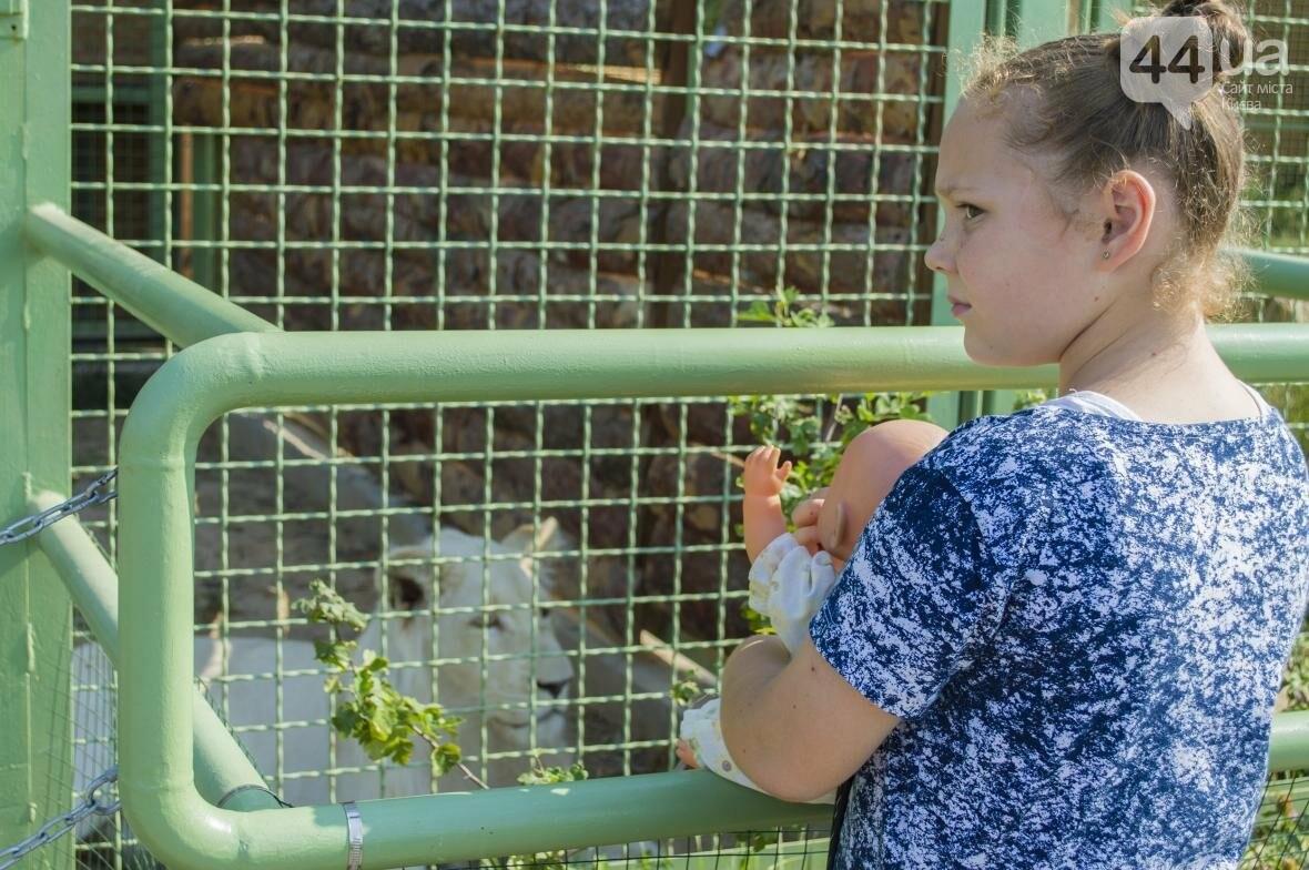 """Вояж по зоопарку """"12 месяцев"""": экзотические животные, большой бассейн и сказочный дворец, фото-6"""