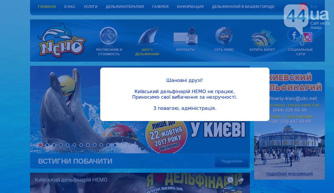 Киевский дельфинарий: трагедия в пяти действиях, фото-6