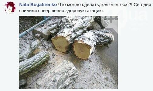 Киевлянин создал таблицу видов уничтожения деревьев, фото-8