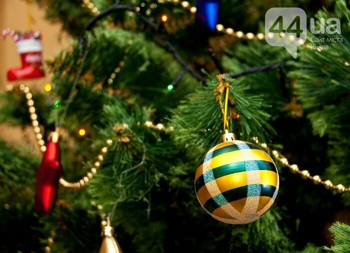 Где лучше отметить Новый год – в Одессе или в Карпатах?, фото-1