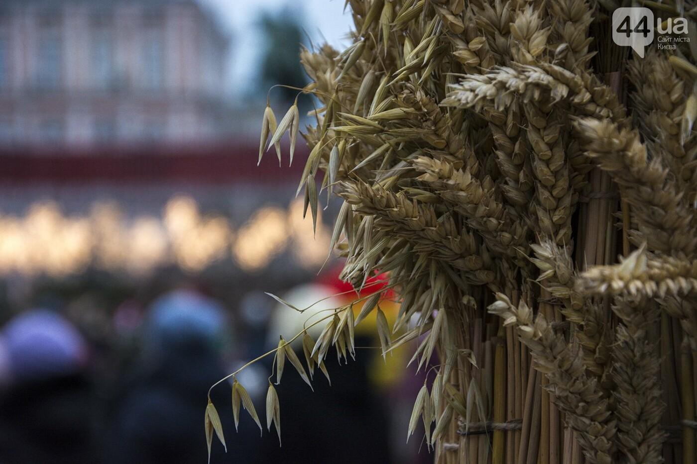 Вертеп, колядки и дидух: как на Софийской площади праздновали Рождество, фото-9