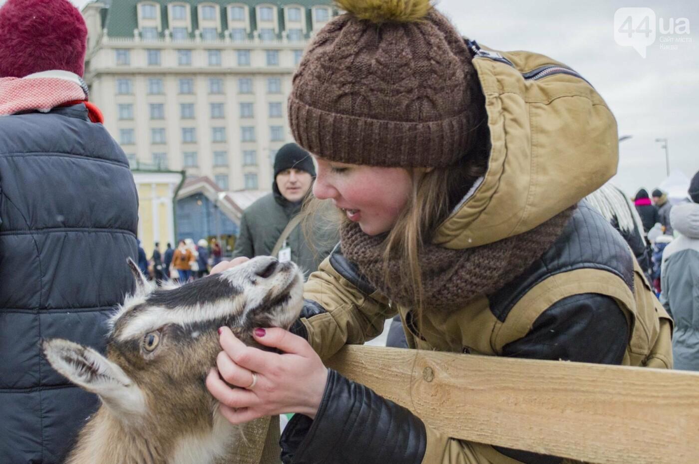 В Киеве прошел первый Рождественский фестиваль, как это было , фото-7