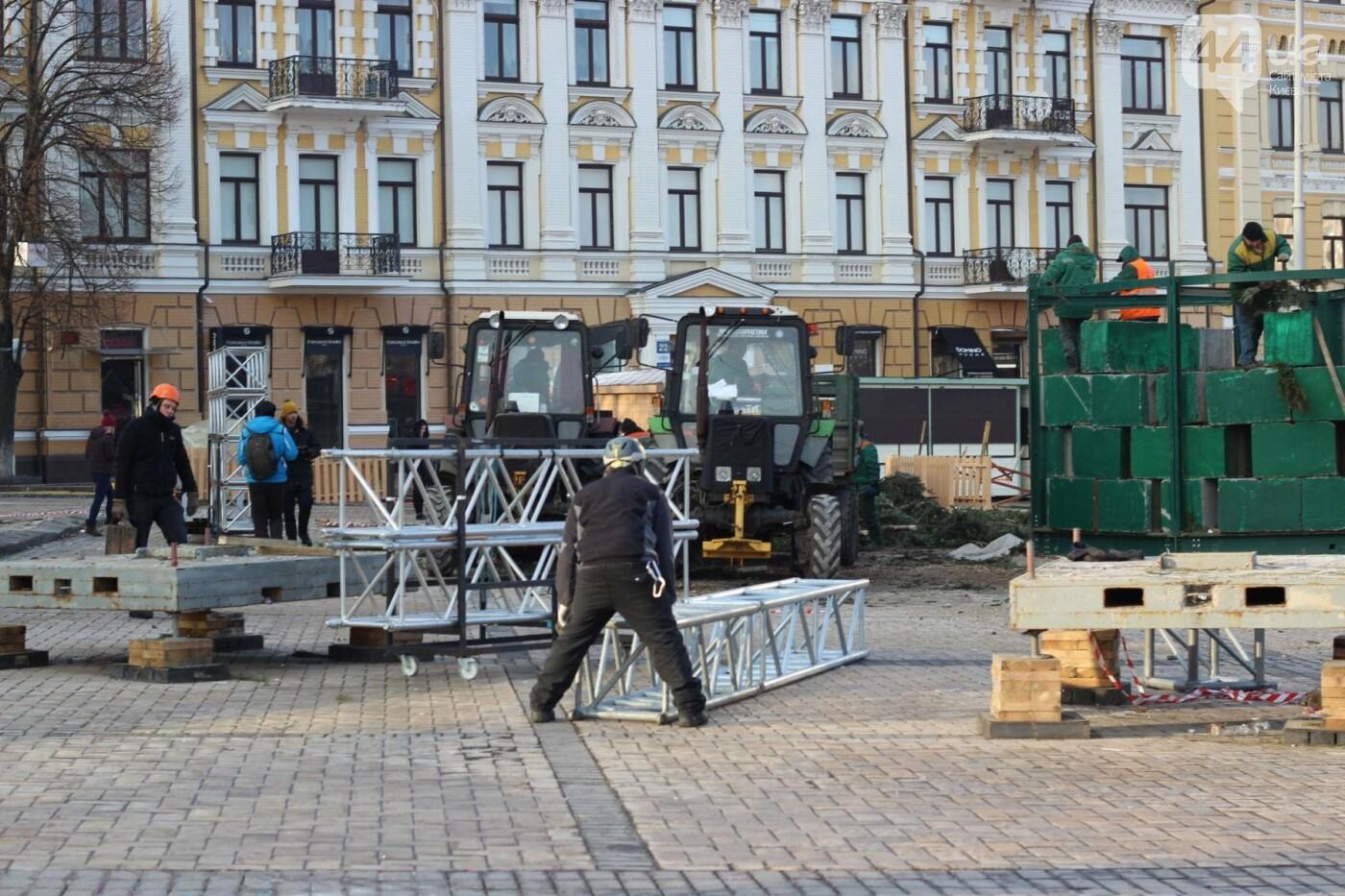 В Киеве утилизировали главную елку страны: как это было, фото-7