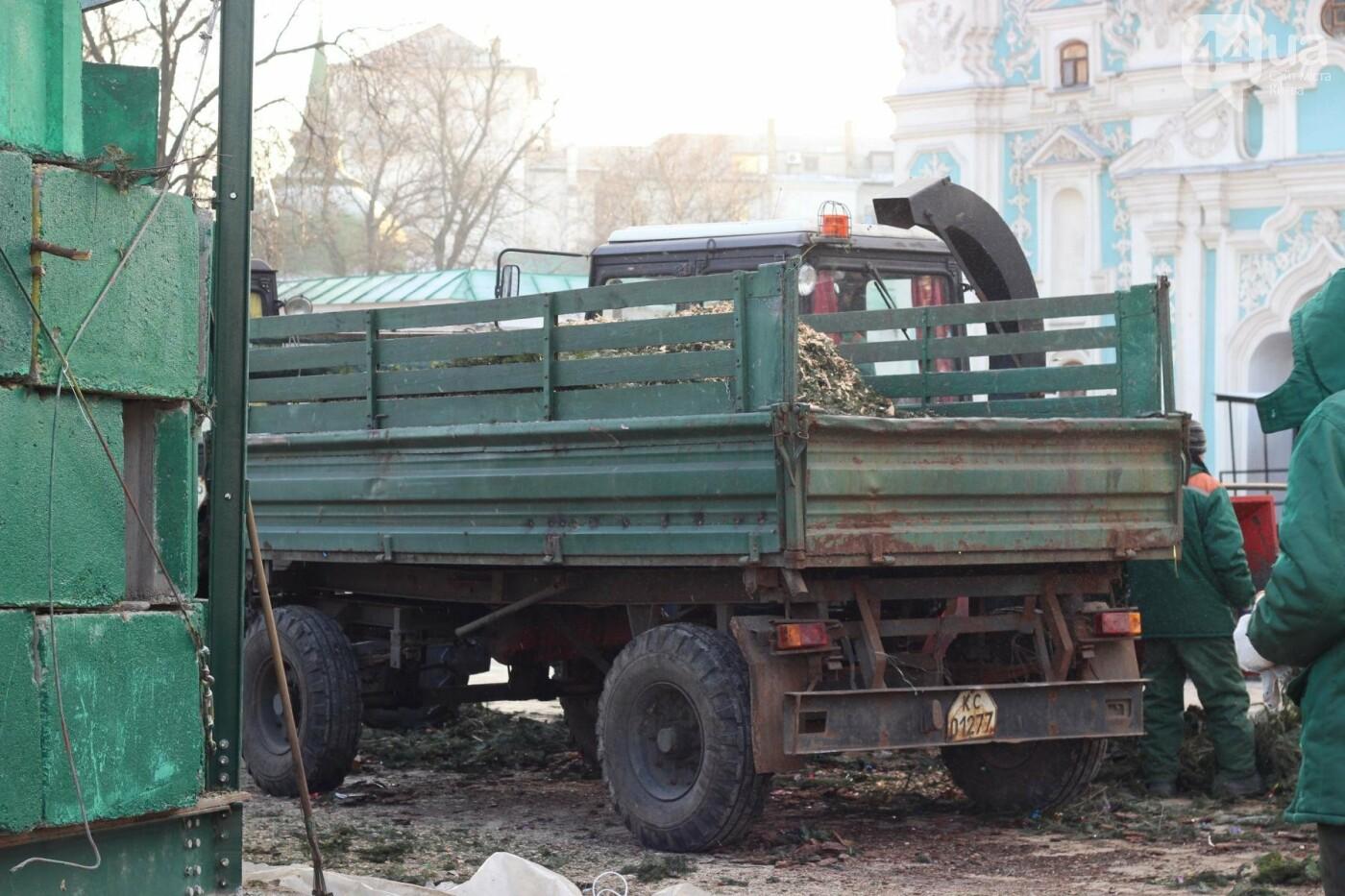 В Киеве утилизировали главную елку страны: как это было, фото-5