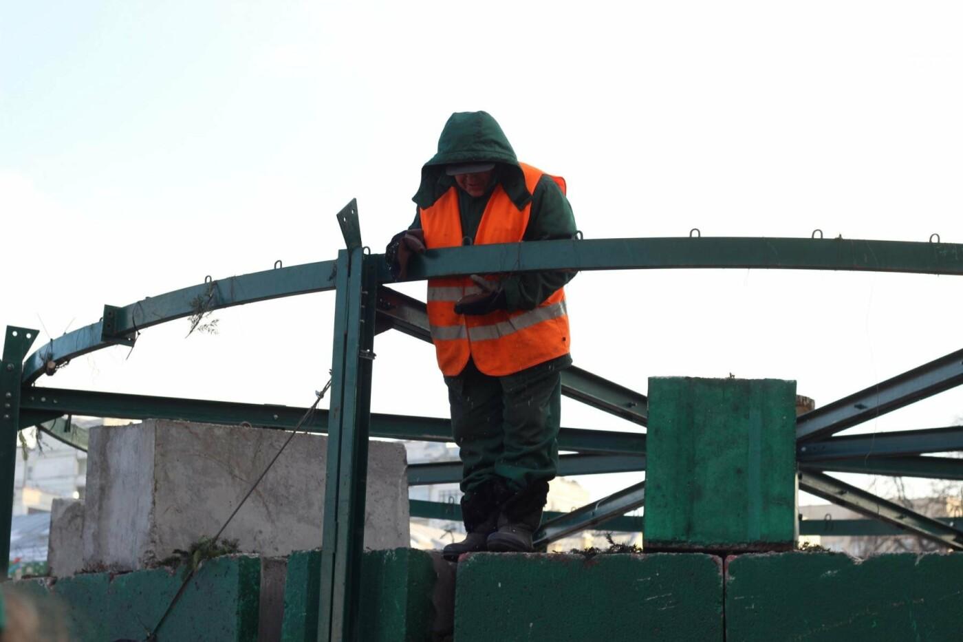 В Киеве утилизировали главную елку страны: как это было, фото-1