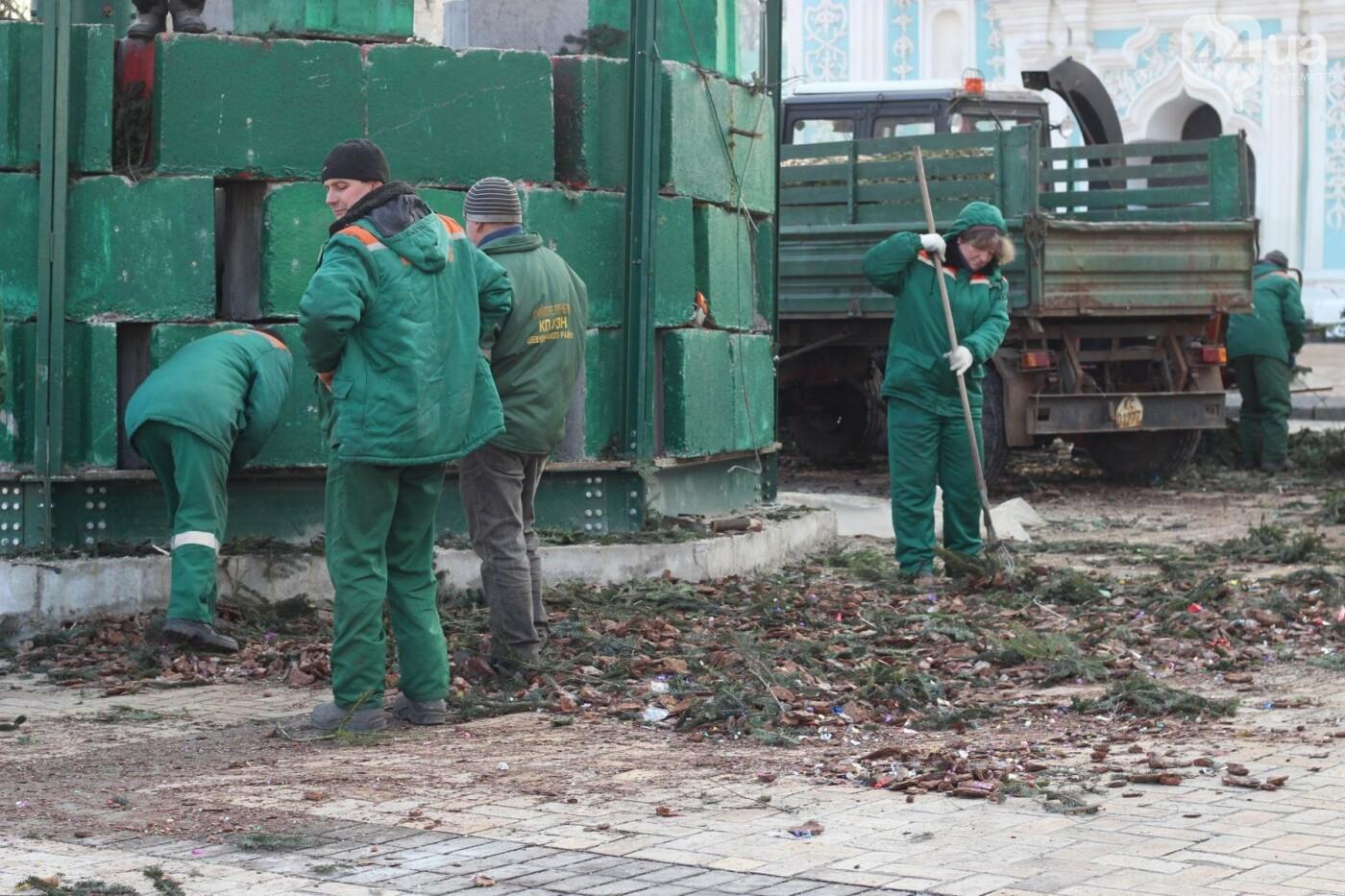 В Киеве утилизировали главную елку страны: как это было, фото-11