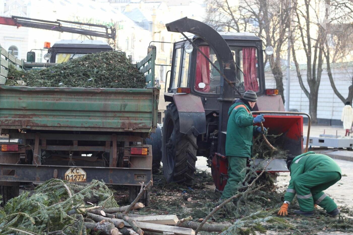 В Киеве утилизировали главную елку страны: как это было, фото-6