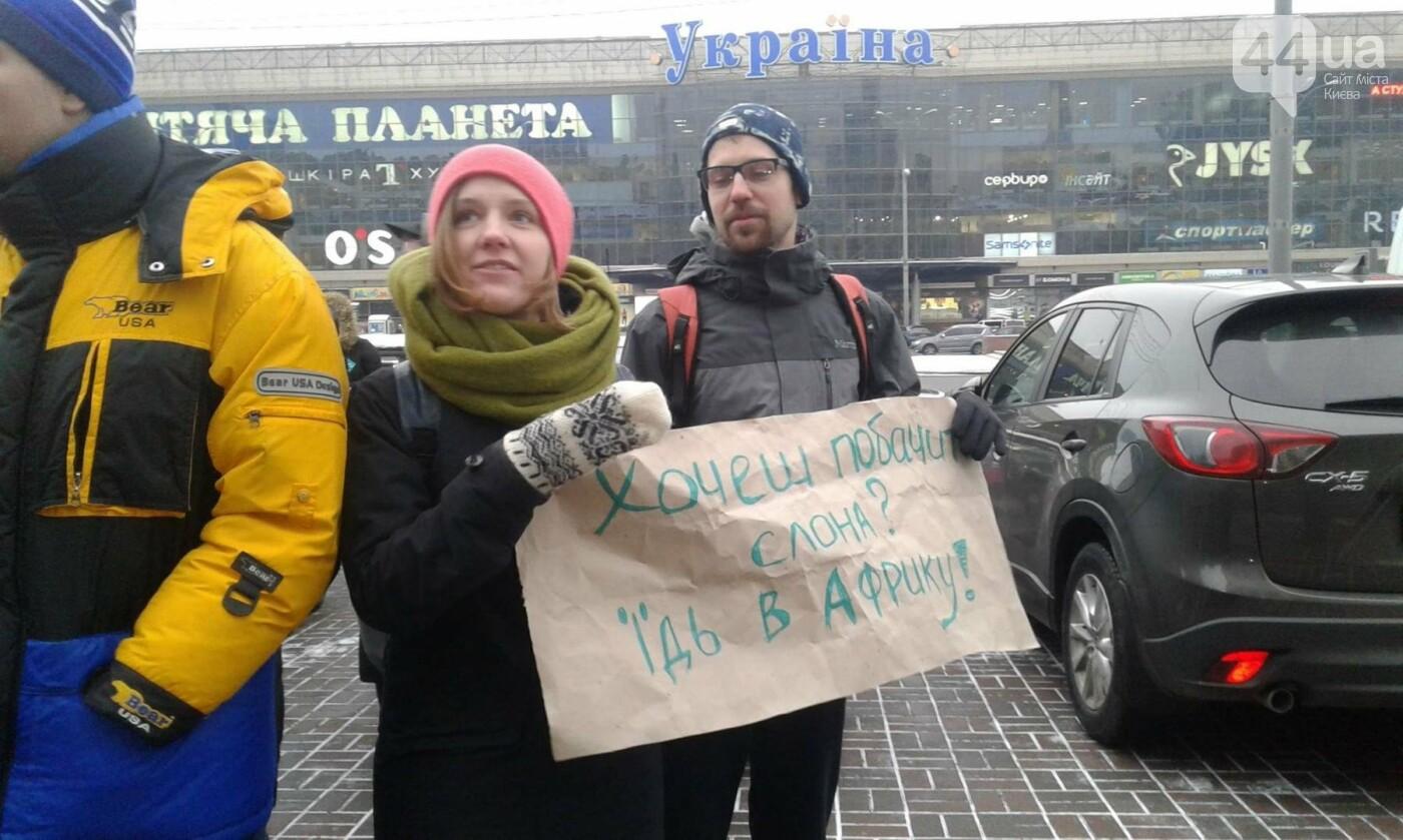 Цирк без животных: в Киеве проходит акция протеста (ФОТО), фото-1