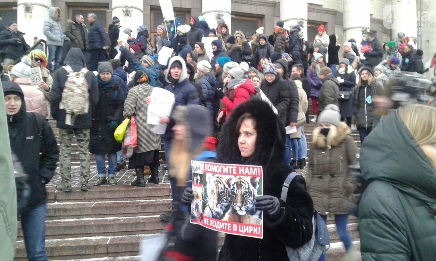 Цирк без животных: в Киеве проходит акция протеста (ФОТО), фото-2