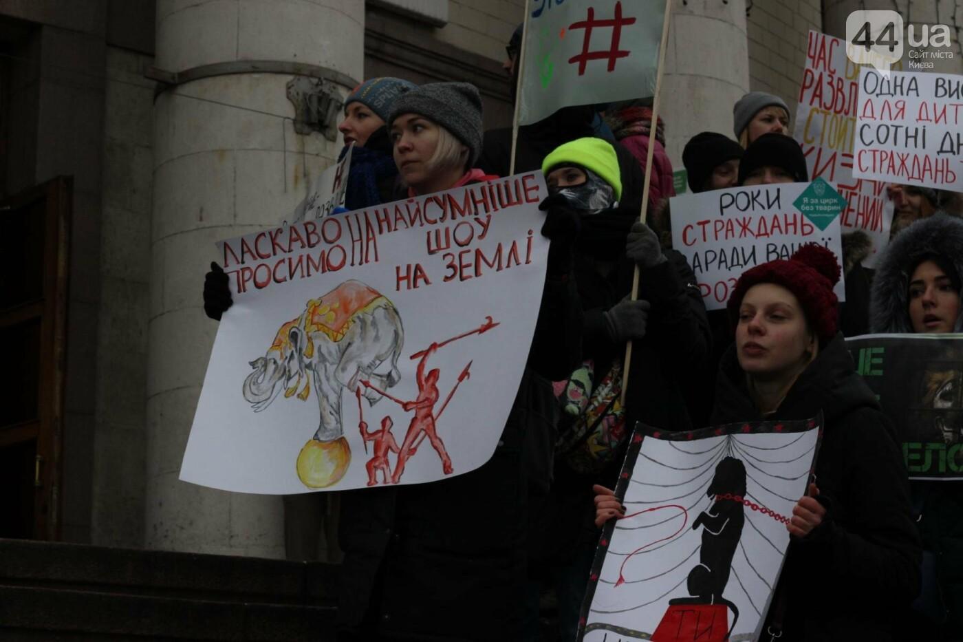 Цирк без животных: как в Киеве прошла акция протеста, фото-22
