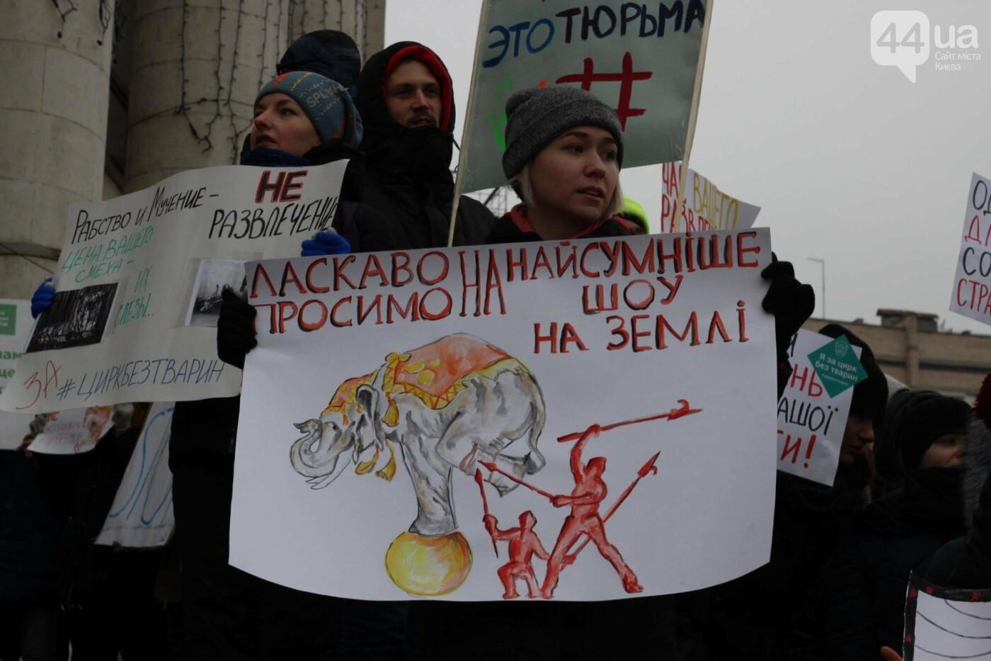 Цирк без животных: как в Киеве прошла акция протеста, фото-28