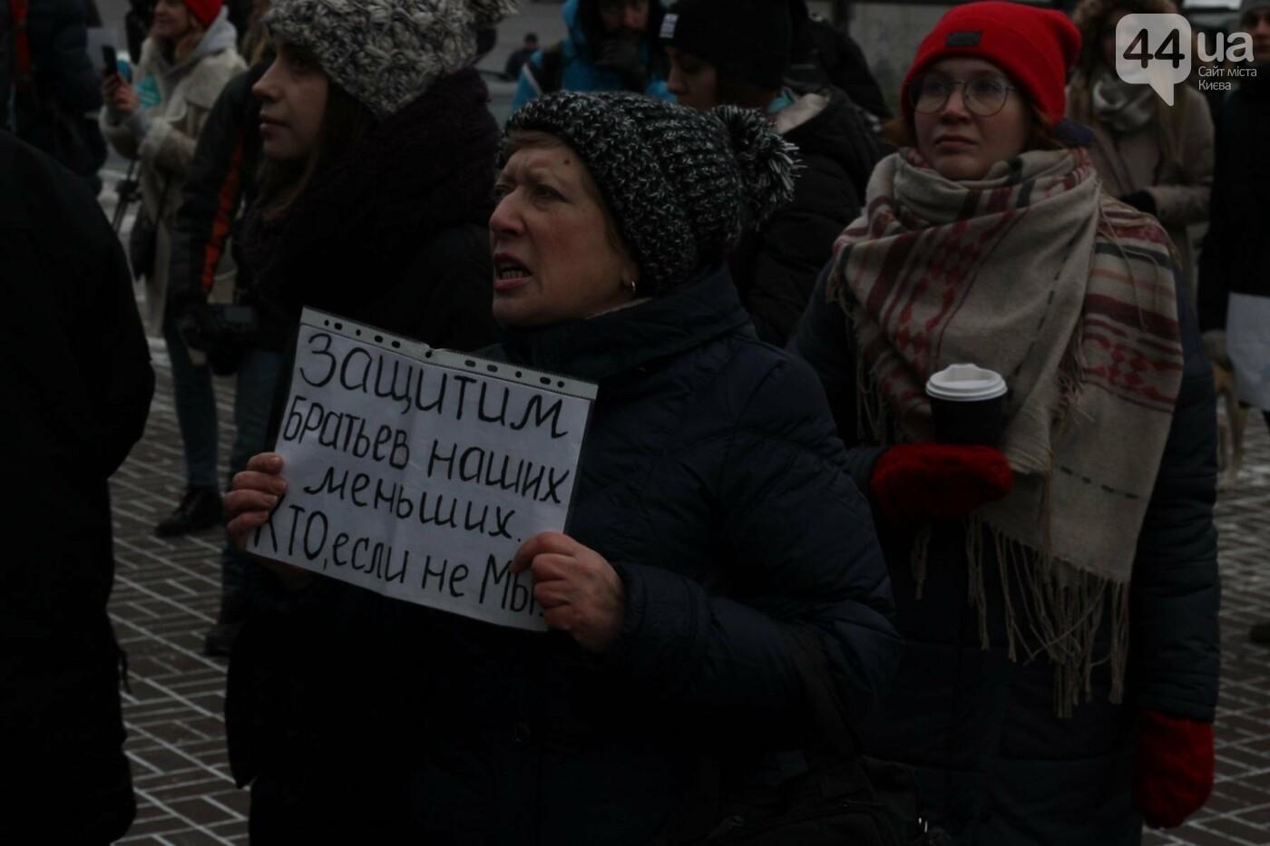 Цирк без животных: как в Киеве прошла акция протеста, фото-6