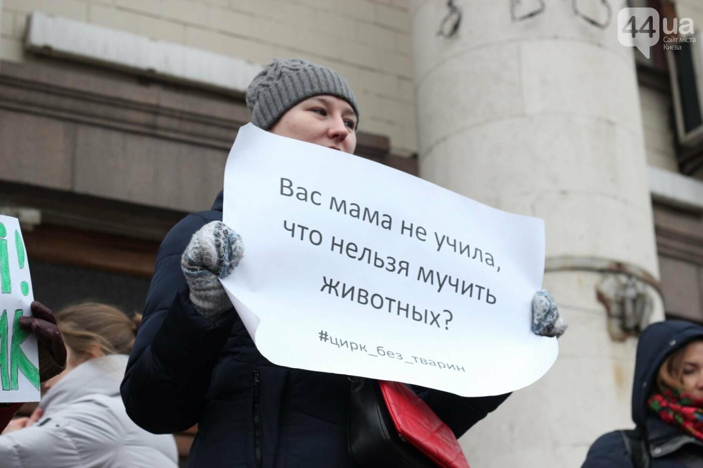 Цирк без животных: как в Киеве прошла акция протеста, фото-8
