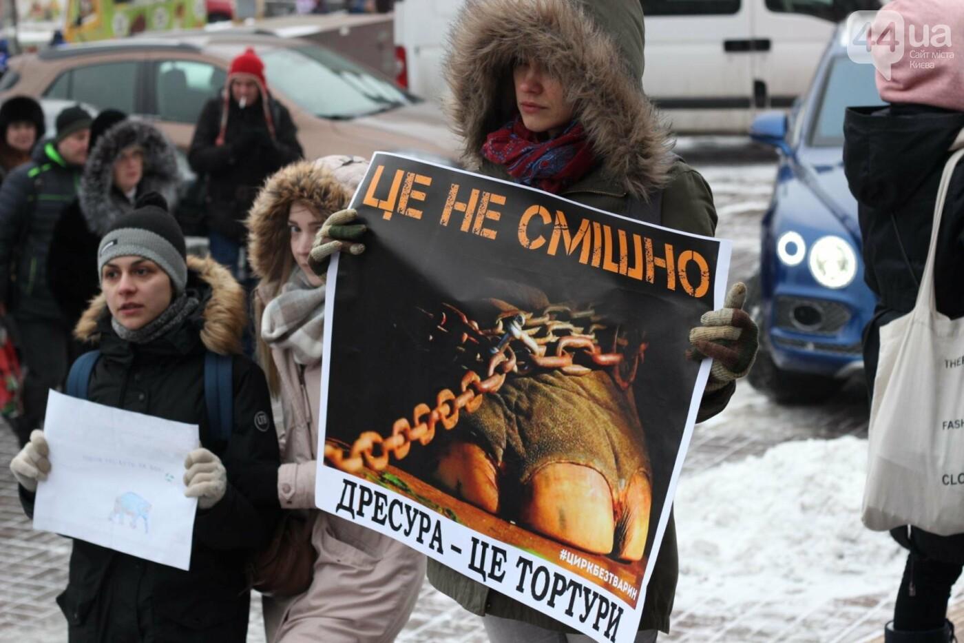 Цирк без животных: как в Киеве прошла акция протеста, фото-35