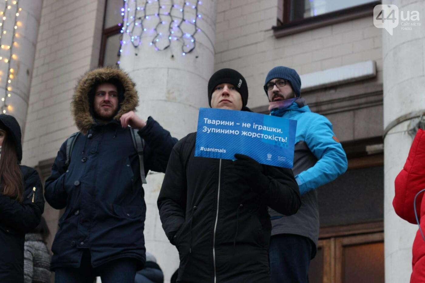 Цирк без животных: как в Киеве прошла акция протеста, фото-18