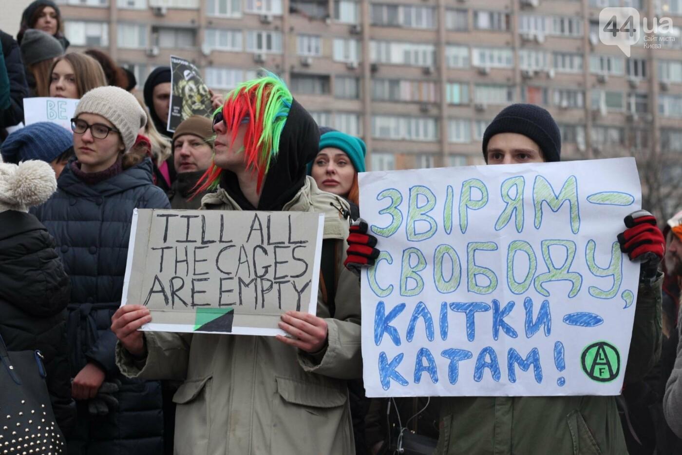 Цирк без животных: как в Киеве прошла акция протеста, фото-40