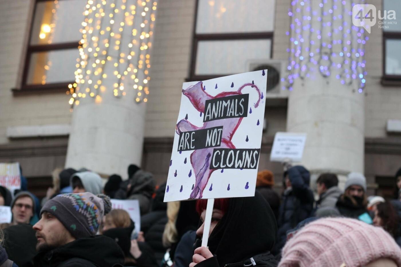 Цирк без животных: как в Киеве прошла акция протеста, фото-25