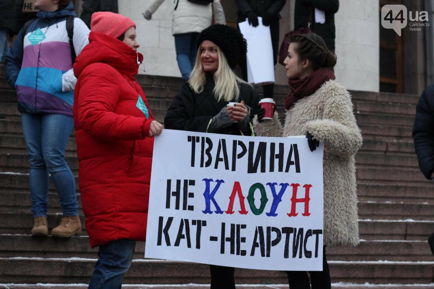 Цирк без животных: как в Киеве прошла акция протеста, фото-30