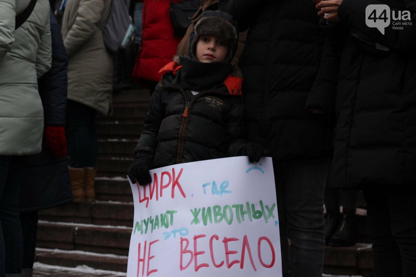 Цирк без животных: как в Киеве прошла акция протеста, фото-1