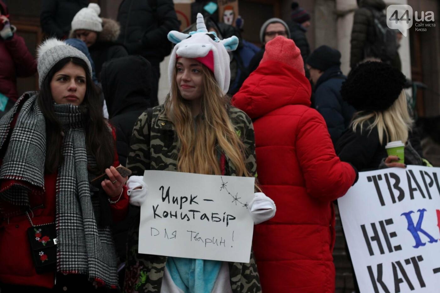 Цирк без животных: как в Киеве прошла акция протеста, фото-33