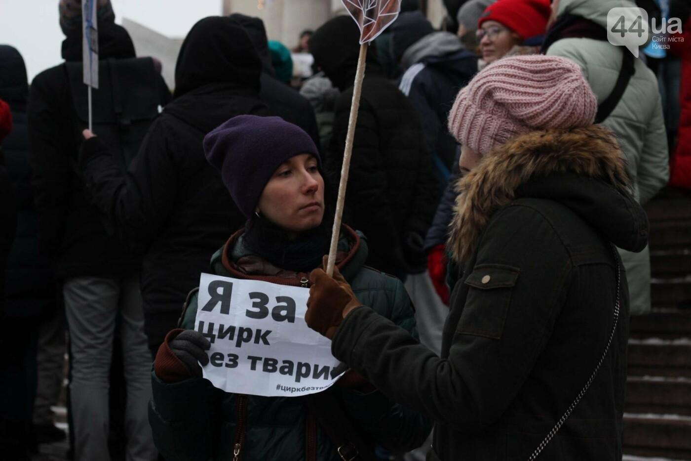 Цирк без животных: как в Киеве прошла акция протеста, фото-12