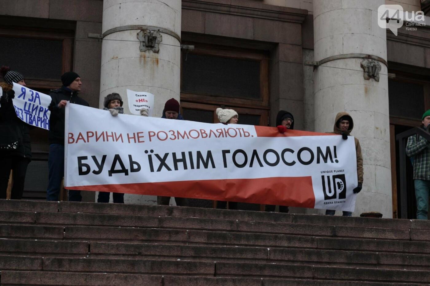 Цирк без животных: как в Киеве прошла акция протеста, фото-38