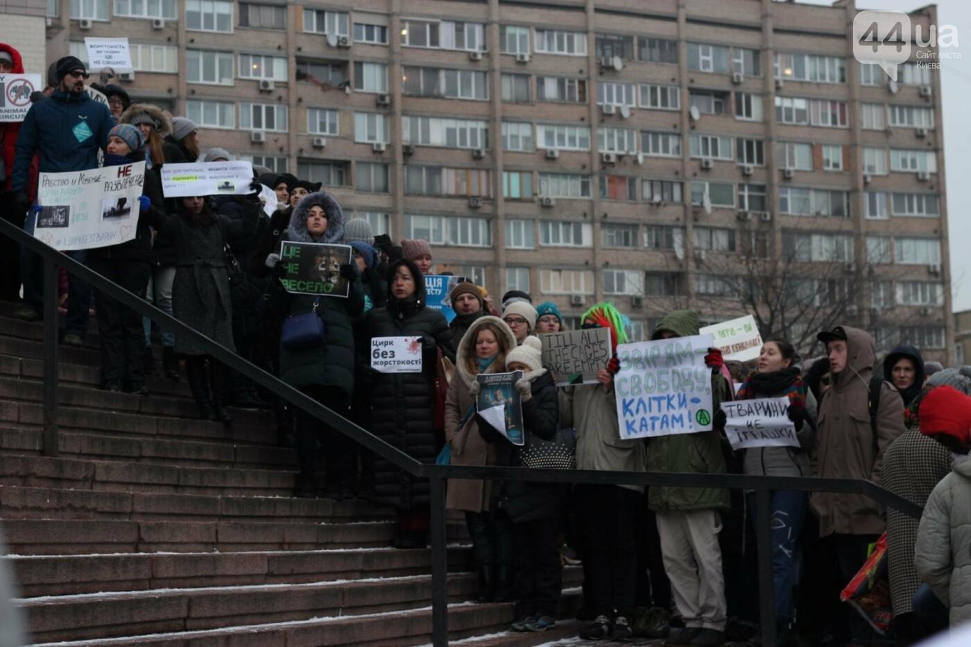 Цирк без животных: как в Киеве прошла акция протеста, фото-39