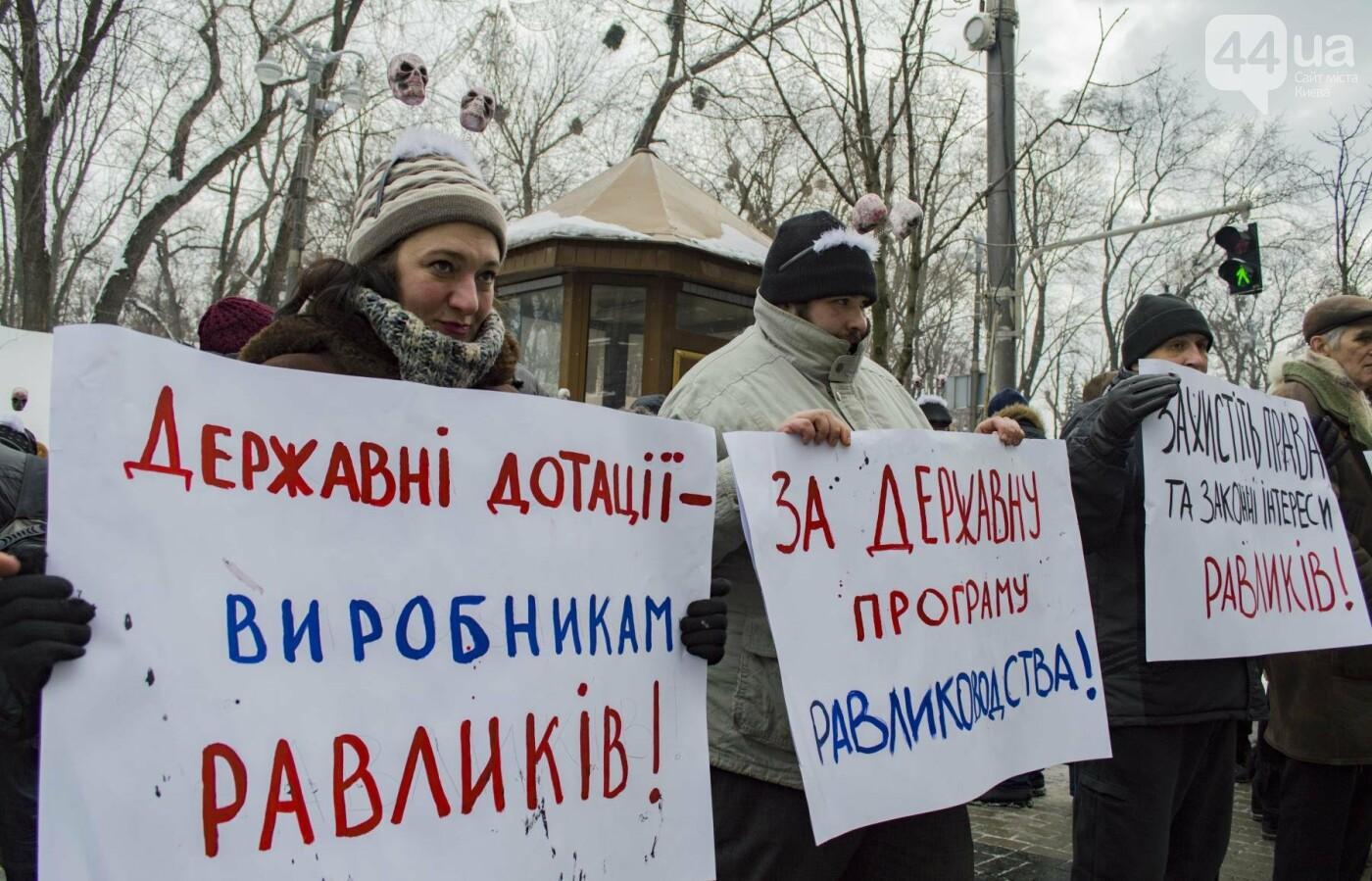 В центре Киева прошла необычная акция в поддержку улиток: как это было, фото-5