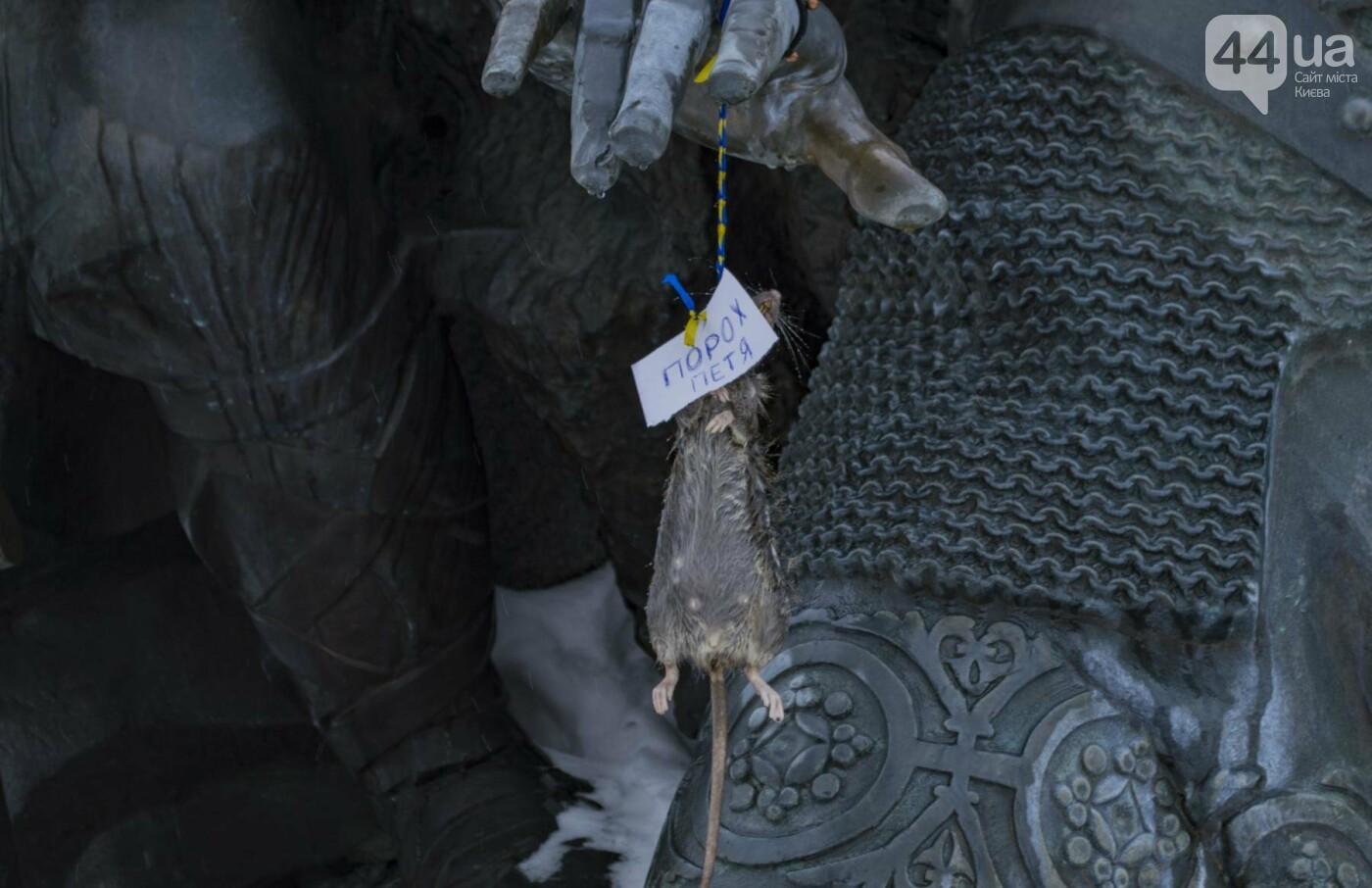 В центре Киева на фонтан повесили мертвую крысу с запиской:  фотофакт, фото-2
