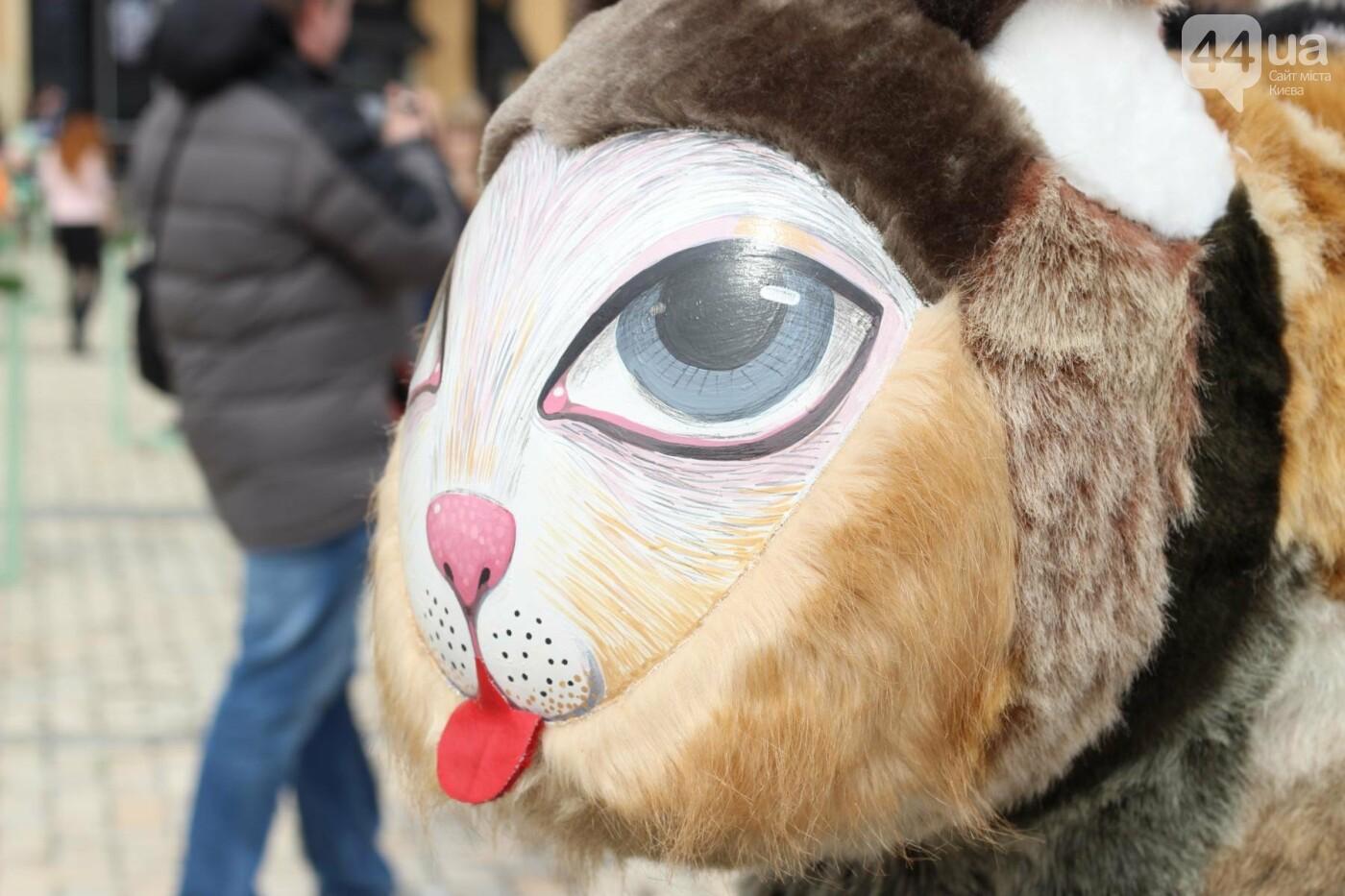 Писанки и кролики: как на Софийской площади проходит Пасхальный фестиваль, фото-29