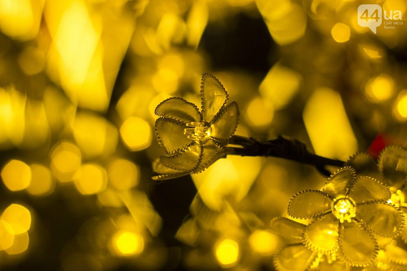 Пасхальная иллюминация: как выглядит фестиваль писанок ночью, фото-6