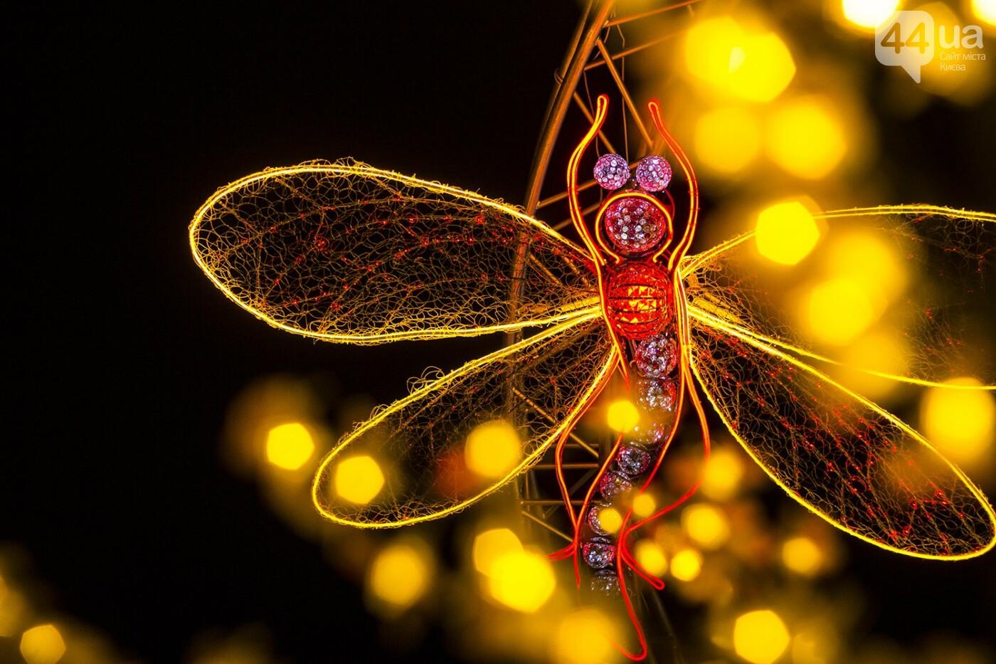 Пасхальная иллюминация: как выглядит фестиваль писанок ночью, фото-2
