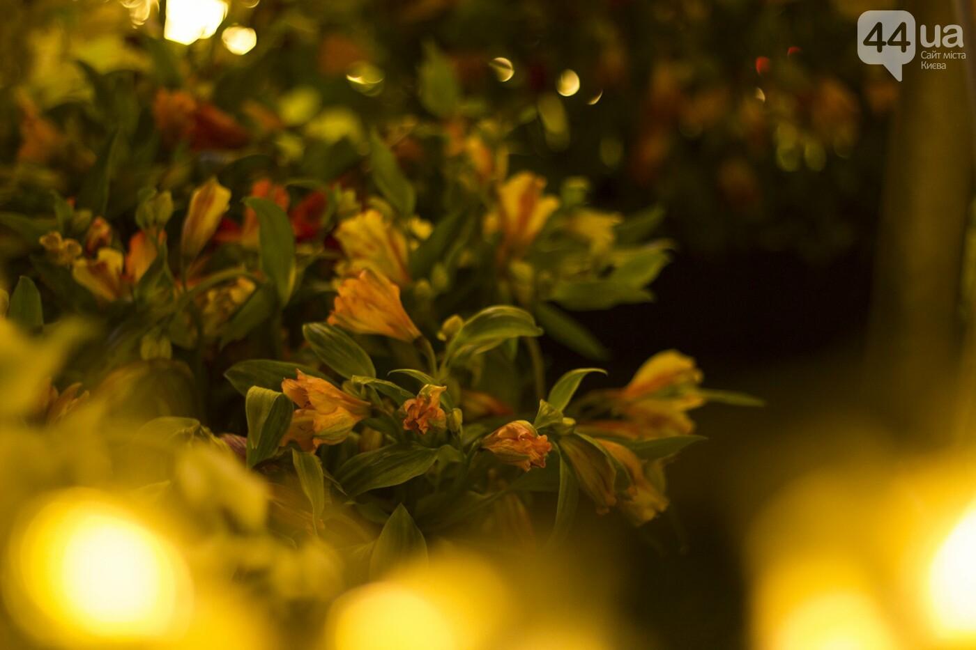 Пасхальная иллюминация: как выглядит фестиваль писанок ночью, фото-19