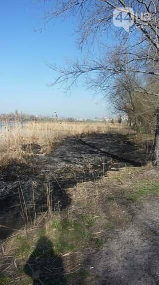 Как киевлянка пожар на озере Иорданском тушила (ФОТО), фото-1
