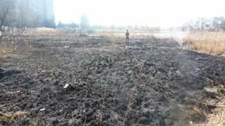 Как киевлянка пожар на озере Иорданском тушила (ФОТО), фото-2