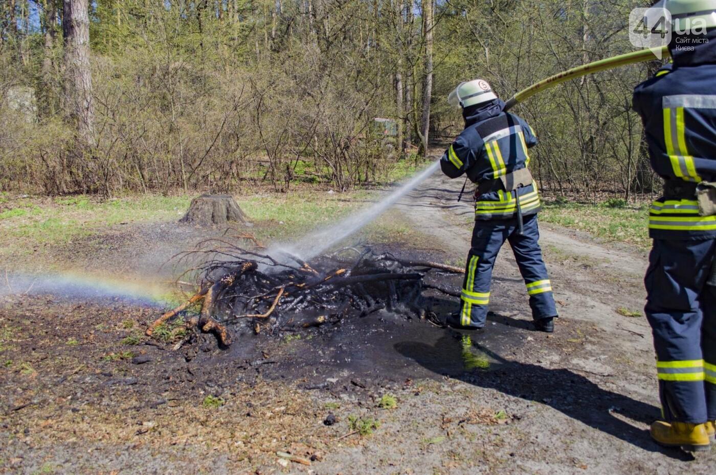 """На окраине Киева """"горел"""" лес: как спасатели боролись с огнем, фото-10"""