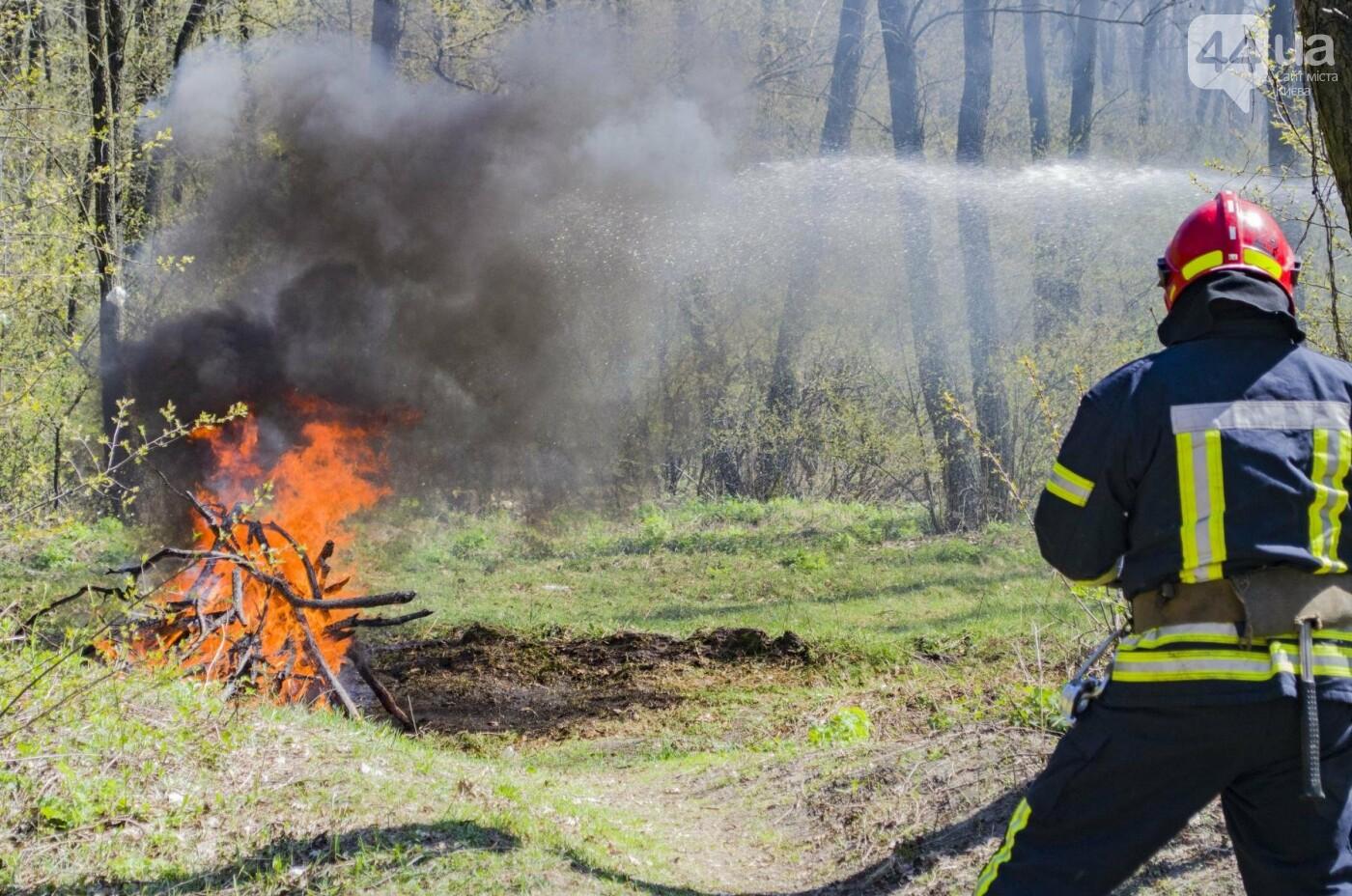 """На окраине Киева """"горел"""" лес: как спасатели боролись с огнем, фото-5"""