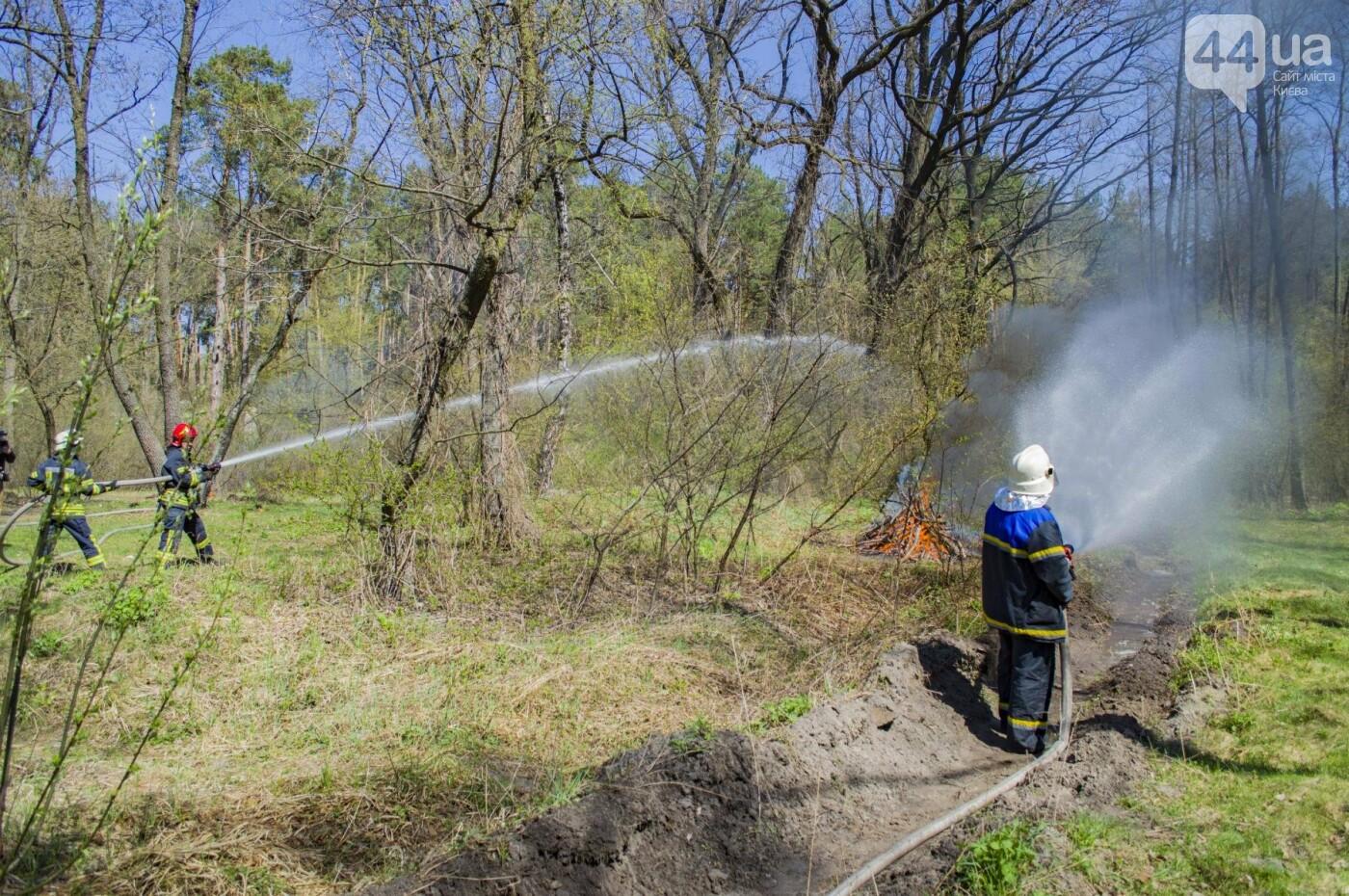 """На окраине Киева """"горел"""" лес: как спасатели боролись с огнем, фото-1"""