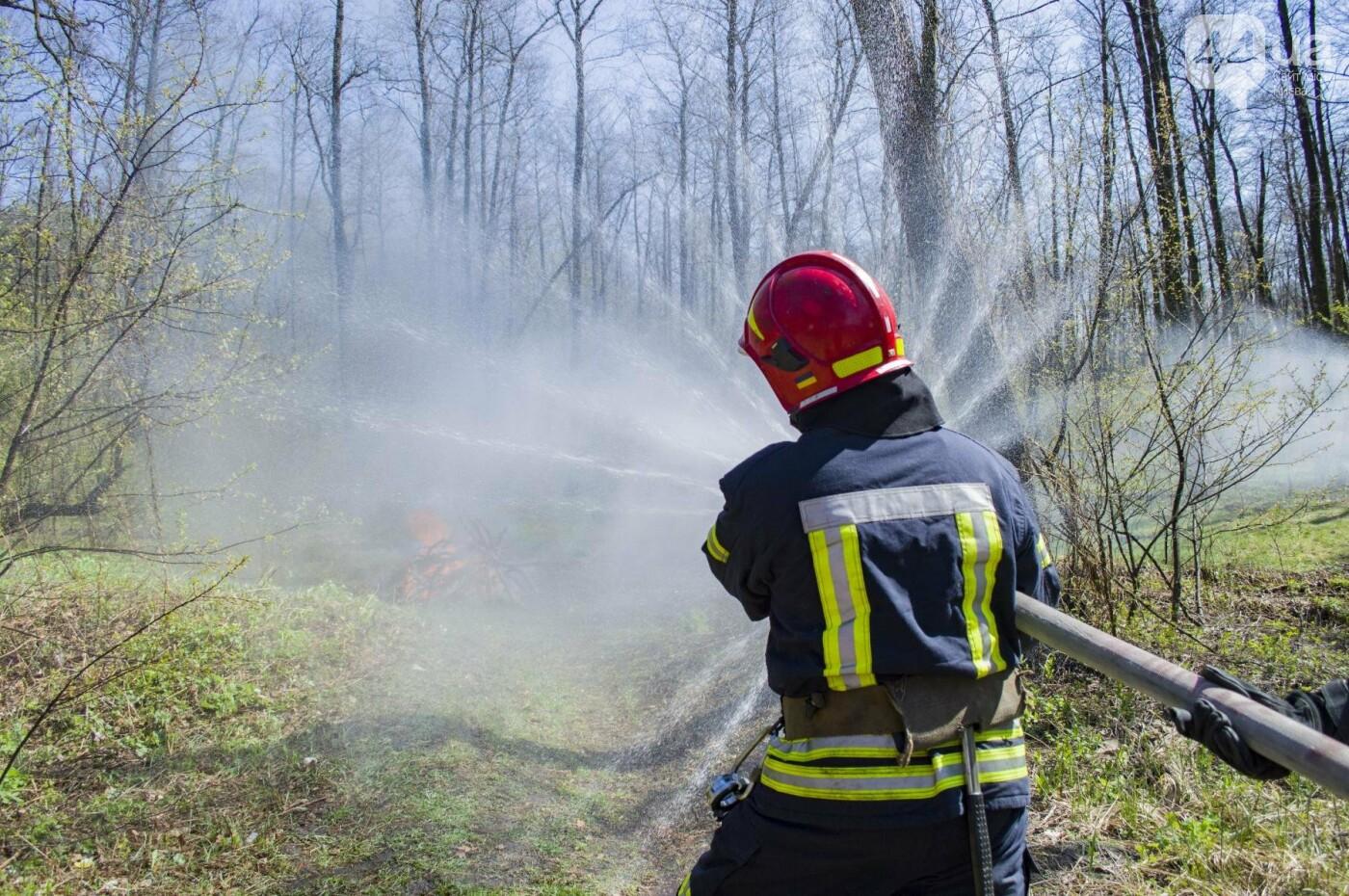 """На окраине Киева """"горел"""" лес: как спасатели боролись с огнем, фото-2"""