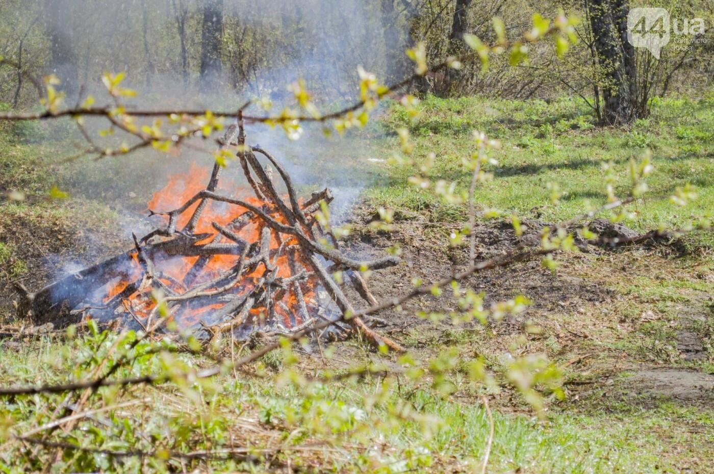 """На окраине Киева """"горел"""" лес: как спасатели боролись с огнем, фото-3"""
