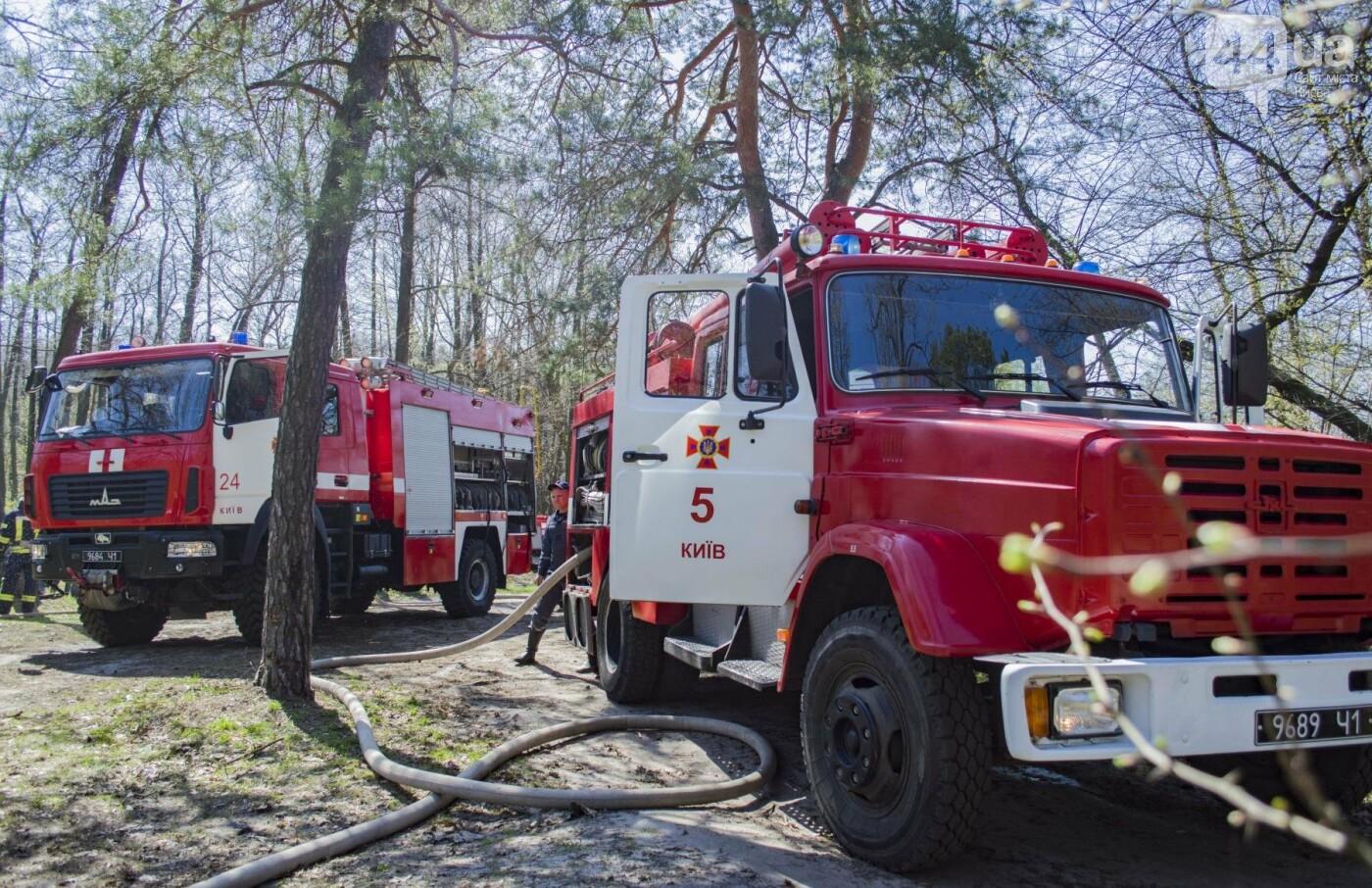 """На окраине Киева """"горел"""" лес: как спасатели боролись с огнем, фото-7"""