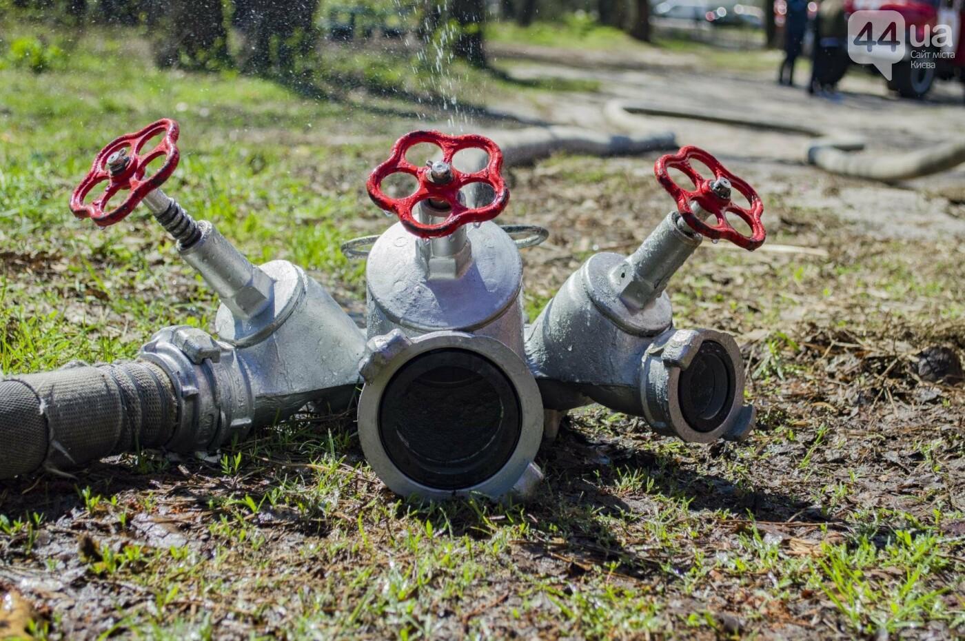 """На окраине Киева """"горел"""" лес: как спасатели боролись с огнем, фото-8"""