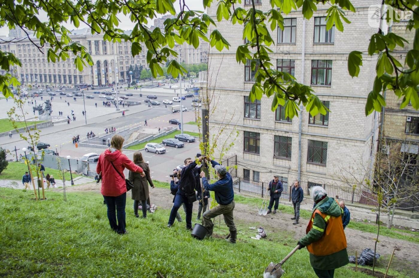 В центре Киева высадили именные деревья в честь украинских бойцов, фото-1