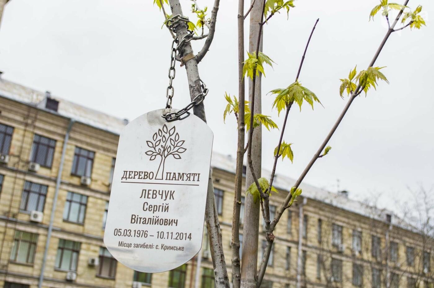 В центре Киева высадили именные деревья в честь украинских бойцов, фото-7