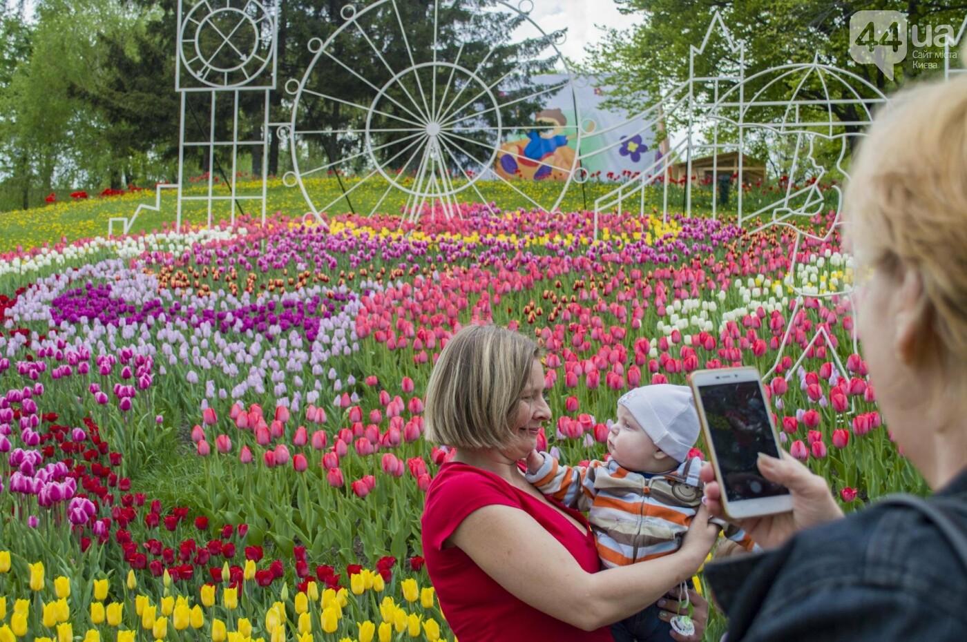 В Киеве открылась масштабная выставка тюльпанов, фото-5