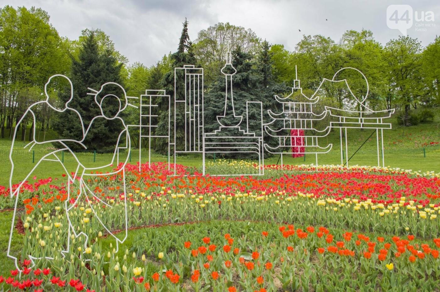 В Киеве открылась масштабная выставка тюльпанов, фото-9
